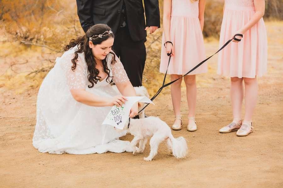 Shawna and Jason: Desert Botanical Garden Elopement the dogs