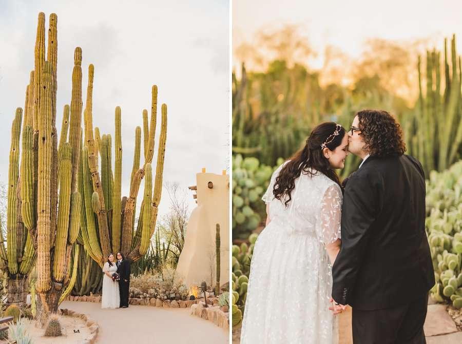 Shawna and Jason: Phoenix Arizona Wedding Photographers cactus