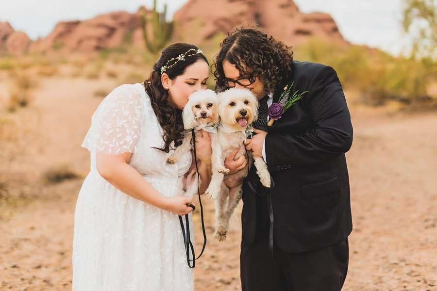 Shawna and Jason: Desert Botanical Garden Elopement dog kisses