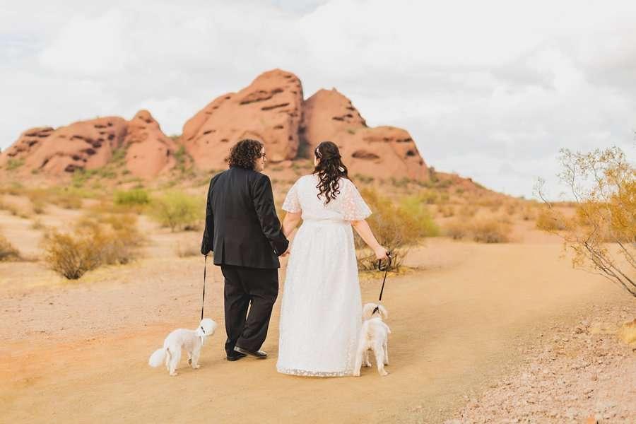 Shawna and Jason: Desert Botanical Garden Elopement walking with the dogs