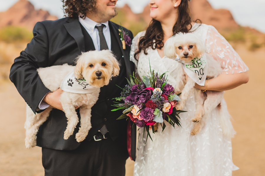 Shawna and Jason: Desert Botanical Garden Elopement bride and groom with their dogs