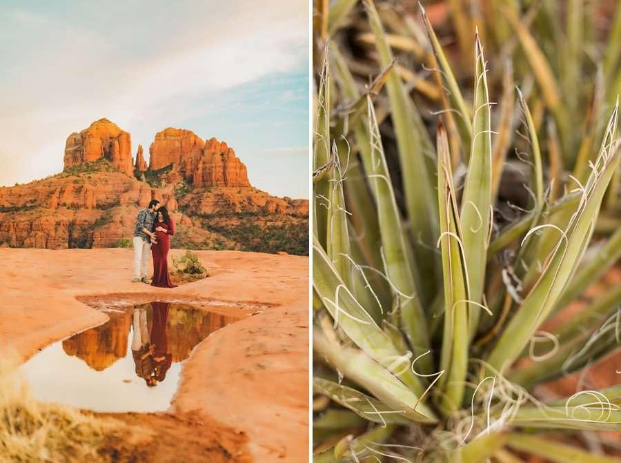 Stephanie and Mike: Sedona Arizona Family Photography cacti